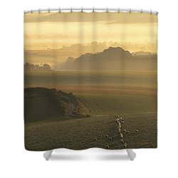 Sheep And Misty South Downs Shower Curtain by Hazy Apple