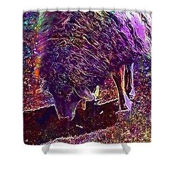 Shower Curtain featuring the digital art Sheep Animal Animals Wool Meadow  by PixBreak Art
