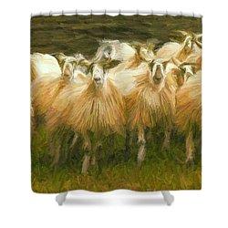 Sheep At Hadrian's Wall Shower Curtain