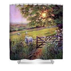 Sheep At Sunset Shower Curtain
