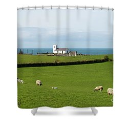 Shower Curtain featuring the photograph Sheep Grazing On Irish Coastline by Juli Scalzi