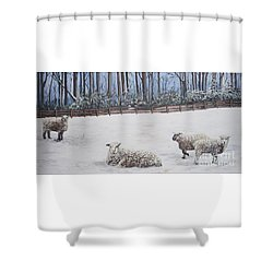 Sheep In Field Shower Curtain