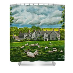 Sheep In Repose Shower Curtain by Charlotte Blanchard