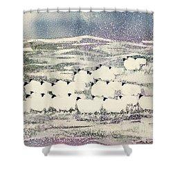 Sheep In Winter Shower Curtain by Suzi Kennett