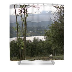 Sheep Near Lough Eske Shower Curtain