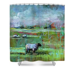 Sheep Of His Field Shower Curtain