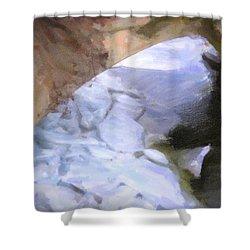 Shelburne Falls River Ice Shower Curtain by Tom Singleton