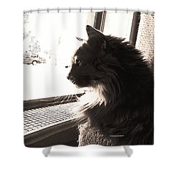 Shelby - Wistful Shower Curtain by Lenore Senior
