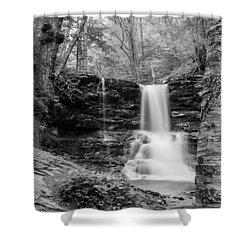 Shower Curtain featuring the photograph Sheldon Reynolds Falls - 8581 by G L Sarti