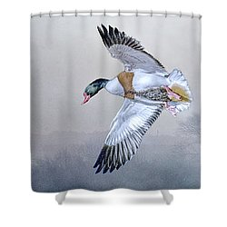 Shelduck Morning. Shower Curtain by Brian Tarr