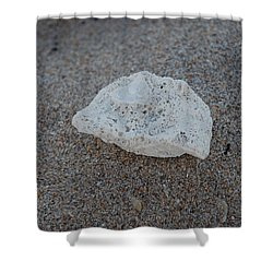 Shell And Sand Shower Curtain by Rob Hans