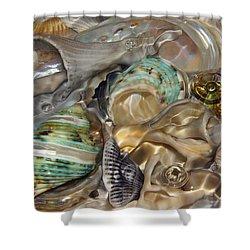 Shell Fluidity Shower Curtain
