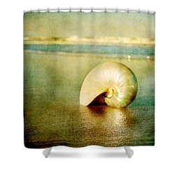 Shell In Sand Shower Curtain by Linda Olsen