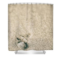 Shower Curtain featuring the photograph Shell On Beach Alabama  by John McGraw