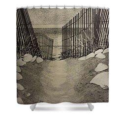 Shell Path Shower Curtain