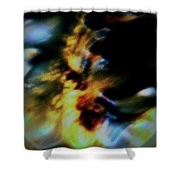 Shell Dancing Shower Curtain by Gina O'Brien