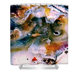 Shell Treasure Story Shower Curtain