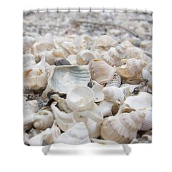 Shower Curtain featuring the photograph Shells 2 by Jocelyn Friis