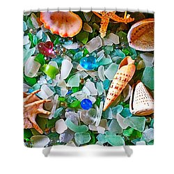 Shells And Glass Shower Curtain