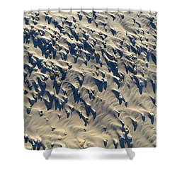 Sand, Shells And Shadows Shower Curtain