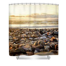 Shower Curtain featuring the photograph Shells At Sunset by April Reppucci