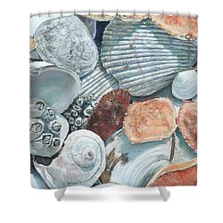 Shells Of The Puget Sound Shower Curtain