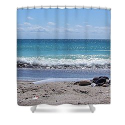 Shower Curtain featuring the photograph Shells On The Beach by Sandi OReilly