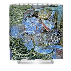 Shells Underwater 20 Shower Curtain