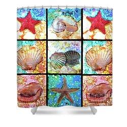 Shells X 9 Shower Curtain