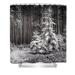 Shower Curtain featuring the photograph Sheltered Childhood by Hannes Cmarits