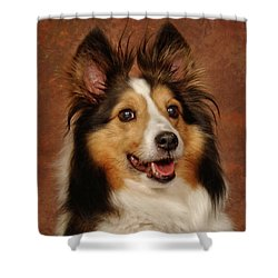 Shower Curtain featuring the photograph Sheltie by Greg Mimbs