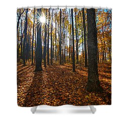 Shenandoah Forest Shower Curtain