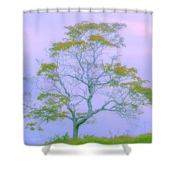 Shepherd Of The Valley Shower Curtain by Az Jackson