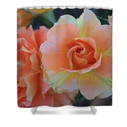Sherbert Rose Shower Curtain by Marna Edwards Flavell