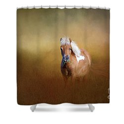 Shetland Pony Shower Curtain by Marion Johnson