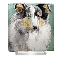 Shetland Sheep Dog Shower Curtain
