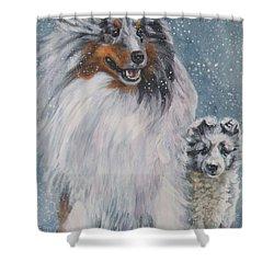 Shetland Sheepdogs In Snow Shower Curtain by Lee Ann Shepard