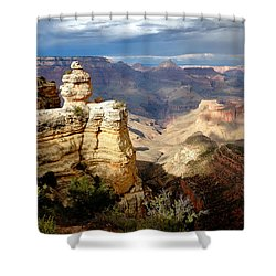 Shifting Shadows Shower Curtain
