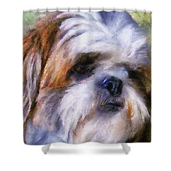 Shih Tzu Portrait Shower Curtain