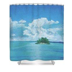 Shimmering Shower Curtain