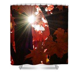 Shine On Shower Curtain