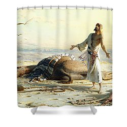 Shipwreck In The Desert Shower Curtain