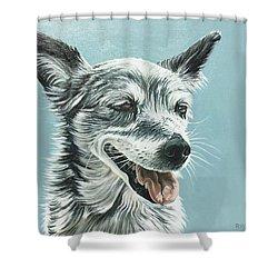 Shiv Shower Curtain