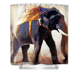 Shivaji  Khana Shower Curtain by Mark Adlington