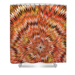 Shockwave Shower Curtain