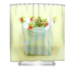 Shopping Bag Shower Curtain