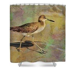 Shower Curtain featuring the painting Shore Bird Beauty by Deborah Benoit