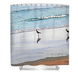 Shore Birds Shower Curtain by Mike Robles