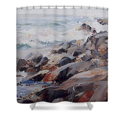 Shore's Rocky Shower Curtain