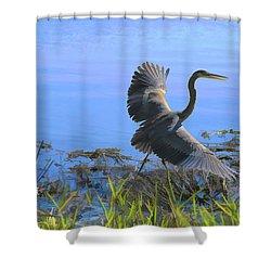 Shore Walk  Shower Curtain